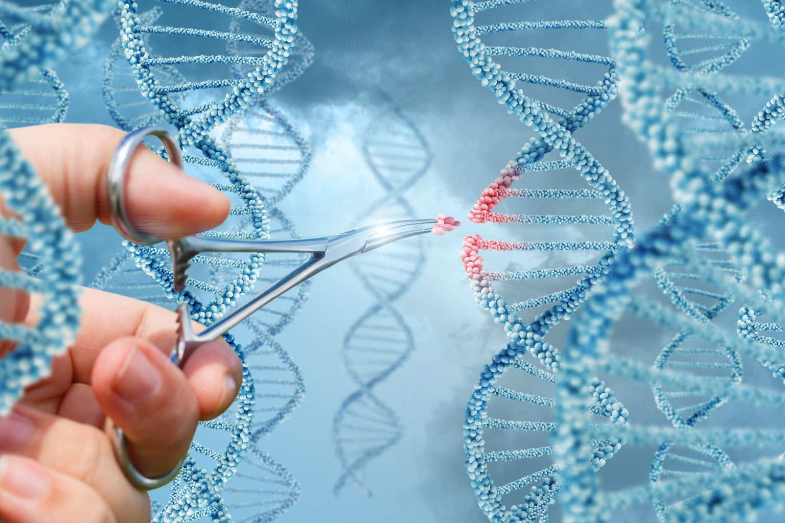 Licensing Opportunities Abound For CRISPR Gene-Editing Technology