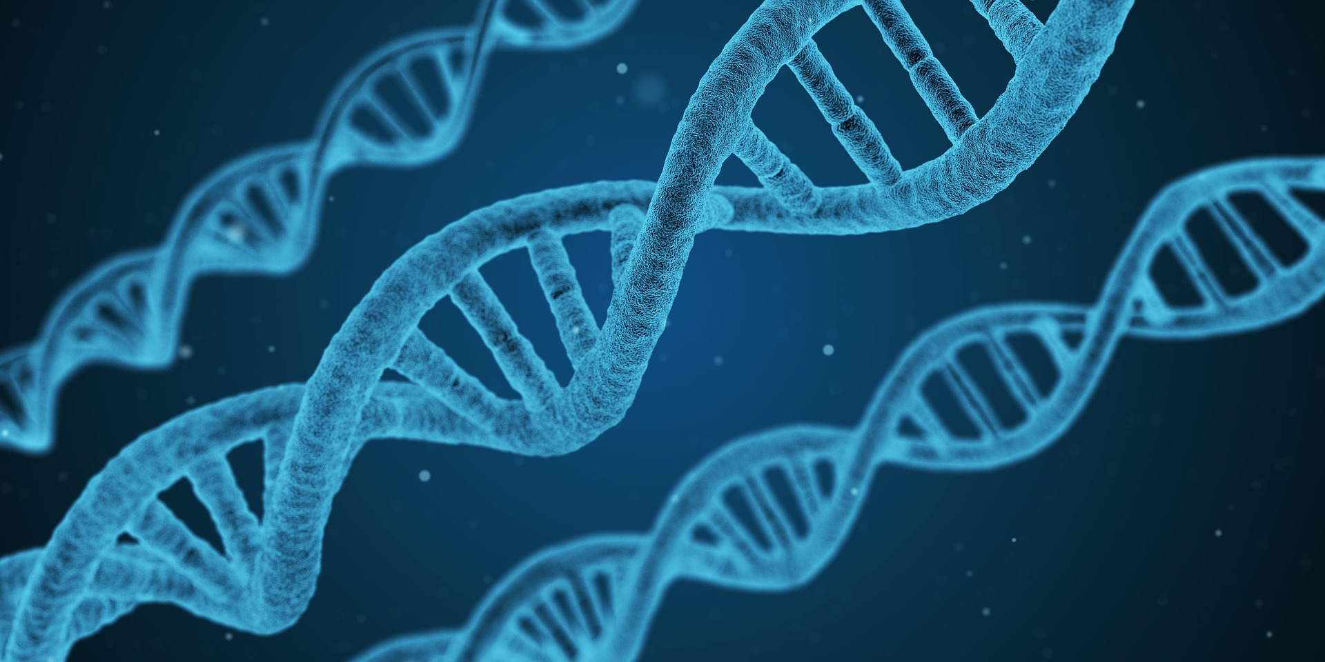 Examining the Future of Genetics Research