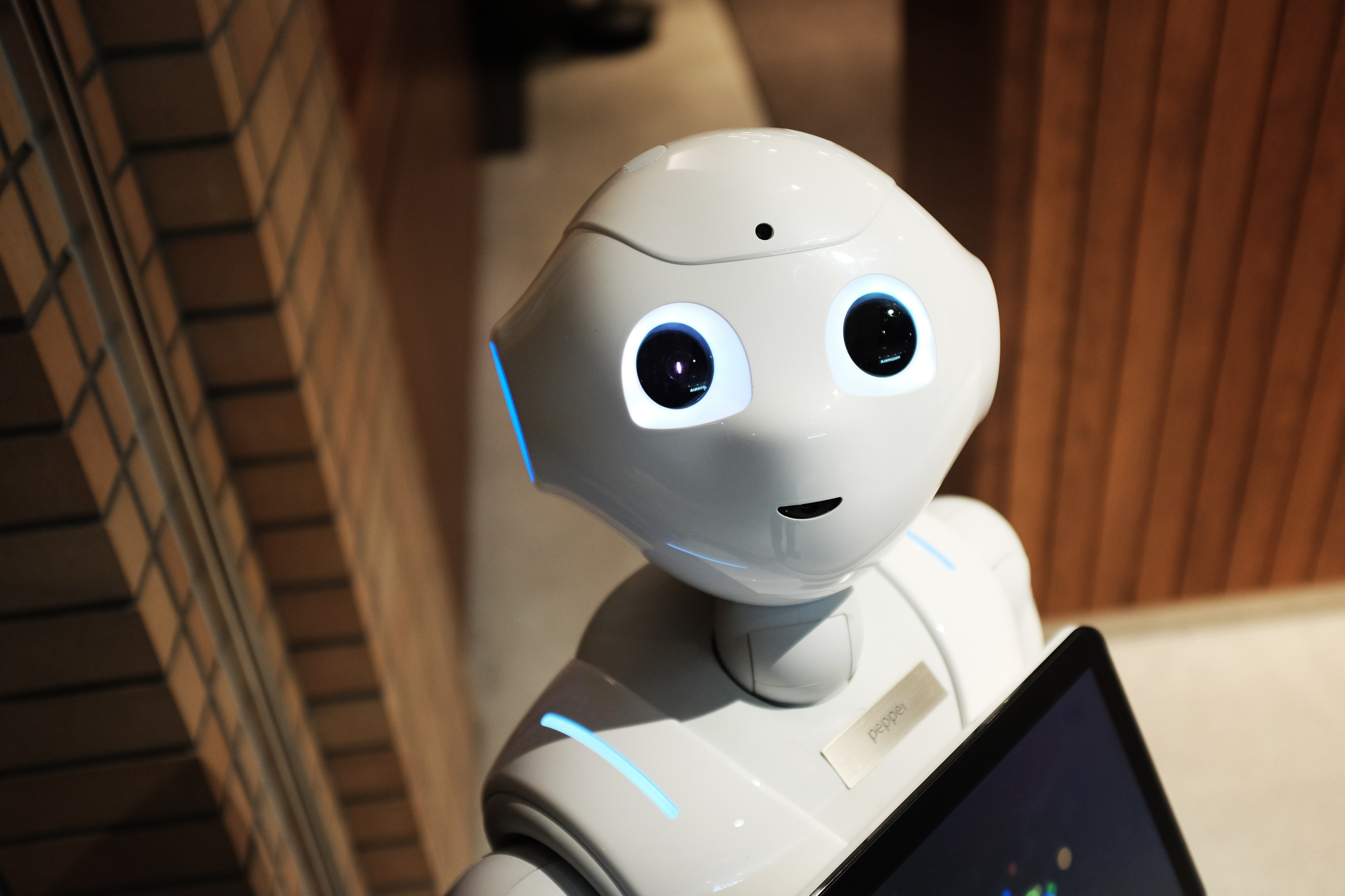 So You Want to Found an AI Startup…
